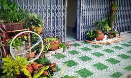 ไอเดียเปลี่ยนหน้าบ้านตึกแถวให้กลายเป็นสวนกะทัดรัด น่ารัก เพิ่มพื้นที่สีเขียวให้บ้าน