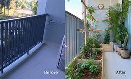 เปลี่ยนระเบียงคอนโดเป็นแปลงผักสวนครัวของคนเมือง