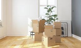 วิธีแพคต้นไม้ส่งไปรษณีย์ แพคอย่างไรไม่ให้ต้นไม้เสียหาย