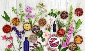 5 วิธีง่ายๆ เนรมิตกลิ่นหอมให้บ้าน แบบที่คุณไม่เคยรู้มาก่อน