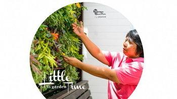"""""""Little time in Garden"""" เคล็ดลับดูแลสวน สำหรับคนไม่ค่อยมีเวลา"""