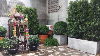 ไอเดียการจัดสวนกระถาง แม้ไม่มีพื้นที่ดินจัดสวน ออกมาสวยงามร่มรื่น By Prom Duangkai