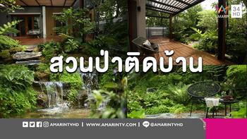 ว้าวหนักมาก! สวนป่าเขียวชะอุ่ม น้ำตกชุ่มชื่น บนพื้นที่ 100 ตารางเมตร