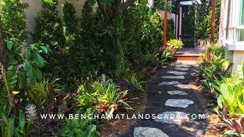 """พาไปชม """"สวนหินข้างบ้าน"""" เนรมิตพื้นที่สีเขียวเพื่อการพักผ่อนในบรรยากาศร่มรื่น"""