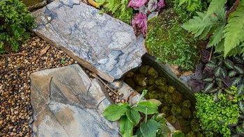 5 วิธีรับมือปัญหาสวนช่วงหน้าร้อน