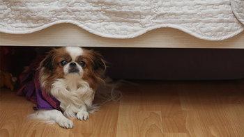 7 ชิ้นต่อไปนี้ ห้ามวางไว้ใต้เตียงนอนโดยเด็ดขาด