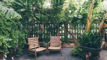 ไอเดียจัดสวนด้วยตัวเอง เพิ่มพื้นที่สีเขียว