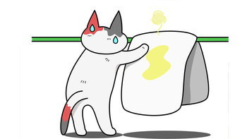 4 ทริคกำจัดกลิ่นปัสสาวะแมว เปลี่ยนความเหม็นหึ่ง เป็นกลิ่นหอม
