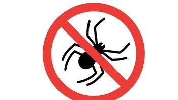 วิธีไล่แมงมุม-ป้องกันแมงมุมไม่ให้เข้าบ้านอย่างได้ผล