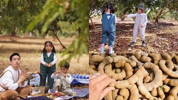 """""""ครอบครัวหมอโอ๊ค - โอปอล์"""" พาเที่ยวบ้านไร่ที่เขาใหญ่ อลิน-อลัน ชวนเก็บมะขามหวาน"""