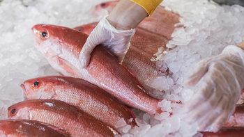 วิธีดับกลิ่นคาวอาหารทะเล หมดปัญหาปวดหัว มือและอุปกรณ์กลับมาไร้กลิ่นเหมือนเดิม