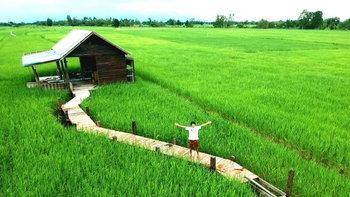 """ชมภาพ """"บ้านกลางทุ่งนา"""" ค่อย ๆ สร้างเองทีละน้อย จนได้บ้านสวยท่ามกลางธรรมชาติ"""