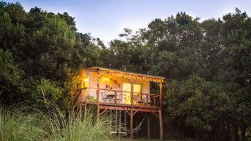 บ้านต้นไม้ ล้อมรอบด้วยสภาพแวดล้อมที่เงียบสงบและเป็นธรรมชาติ