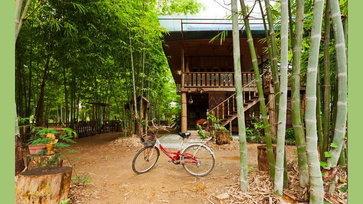 บ้านไม้ใต้ถุนสูงแบบดั้งเดิม มีระเบียงกว้างโปร่ง สัมผัสความร่มรื่นกลางสวนป่าไผ่