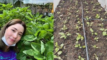"""สวนคุณแม่ """"บัวชมพู ฟอร์ด"""" ปลูกผักกินเอง ผลผลิตดี จนต้องแปลงโฉมเป็นแม่ค้าขายผัก"""