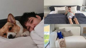 """เปิด """"ห้องนอนหมอเจี๊ยบ ลลนา"""" กับเตียงที่ออกแบบมาเพื่อเจ้ากระเพรา สุนัขขาสั้น"""