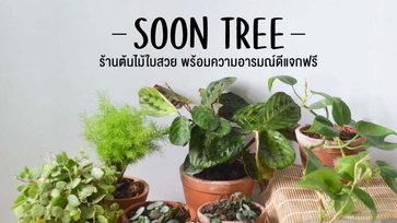 Soon Tree ร้านต้นไม้ใบสวย พร้อมแจกความขำขันชวนหัวเราะแบบฟรีๆ
