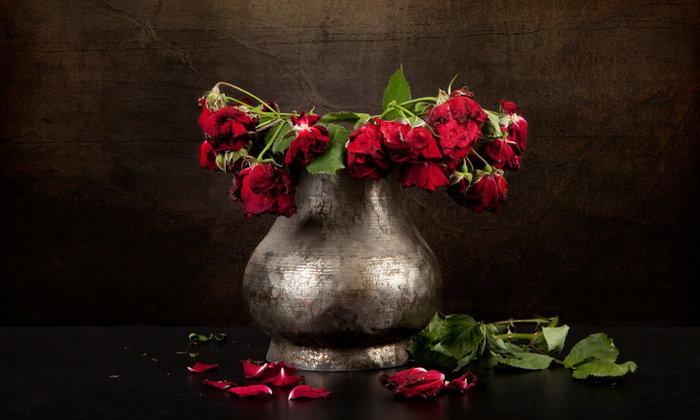 9 วิธีชะลอความเหี่ยวของดอกไม้ ให้อยู่กับเรานานกว่าเดิม