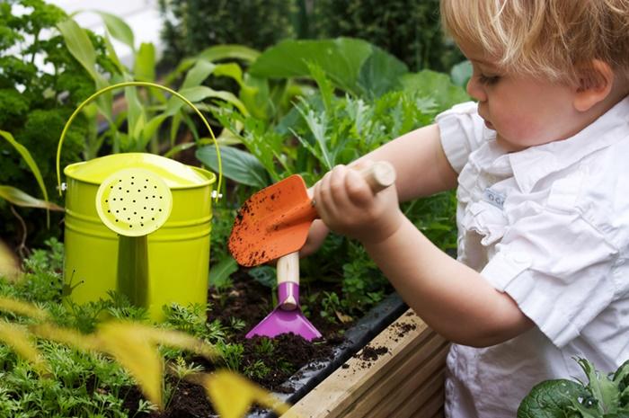 ปลูกผักในคอนโดไว้กินเอง ใช้ระเบียงให้เป็นประโยชน์