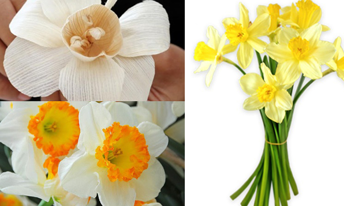 """ทำความรู้จัก """"ดอกดารารัตน์"""" ดอกไม้จันทน์ พระราชพิธีถวายพระเพลิงพระบรมศพ ในหลวงรัชกาลที่ 9"""
