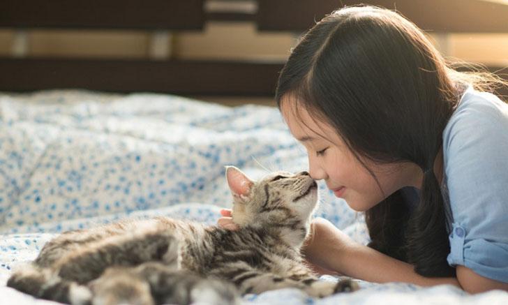 7 เคล็ดลับดูแลบ้านให้สะอาดง่าย ๆ สำหรับคนเลี้ยงหมา-แมว