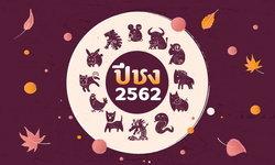 ปีชง 2562 (ปีกุน) พร้อมวิธีแก้ปีชง