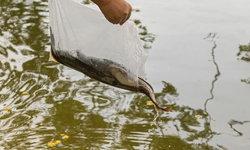 โหรพันพยากรณ์ ชี้ราศีที่ในช่วงนี้ปัญหารุมเร้า แนะทำบุญ ปล่อยปลา ด่วน !