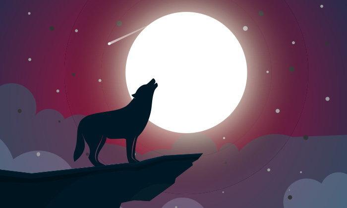 ทำนายฝัน ฝันเห็น สุนัขหอน ฝันว่า สุนัขหอน