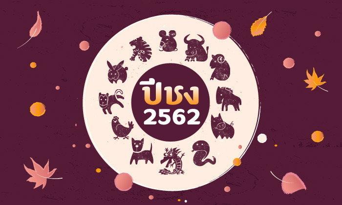 ปีชง 2562 (ปีกุน) มีปีนักษัตรไหนบ้าง พร้อมวิธีแก้ปีชง