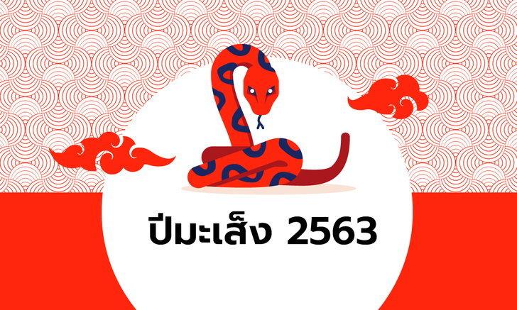ดูดวงจีน 12 นักษัตร ปี 2563 (ปีมะเส็ง)