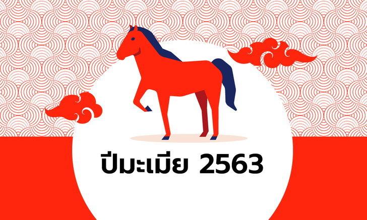 ดูดวงจีน 12 นักษัตร ปี 2563 (ปีมะเมีย)