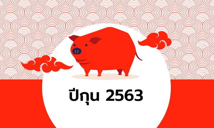 ดูดวงจีน 12 นักษัตร ปี 2563 (ปีกุน)