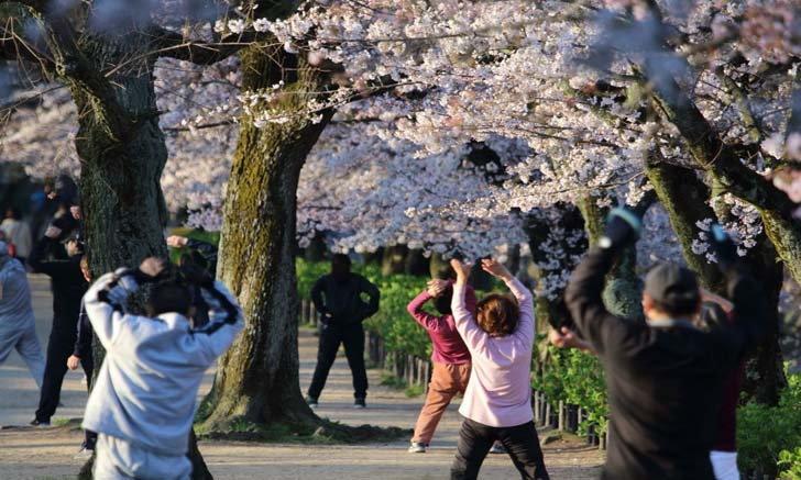 คำทำนายสไตล์ญี่ปุ่น ดวงสุขภาพของแต่ละราศีประจำปี 2020