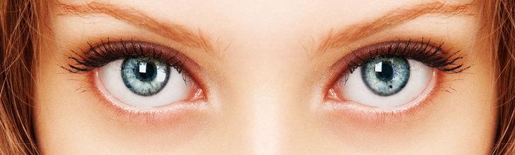 การทำงานของดวงตา - แว่นสายตา แว่นกันแดด รับตัดแว่นสายตา  กรอบแว่นสายตาราคาถูก | Youoptic : Inspired by LnwShop.com