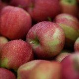 แบบทดสอบความรักของคุณจากแอปเปิ้ล