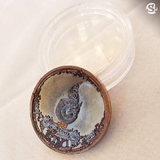 เหรียญปกปักรักษา