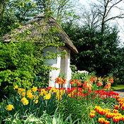 ฮวงจุ้ย : จัดสวนสวย..เสริมฮวงจุ้ยบ้าน