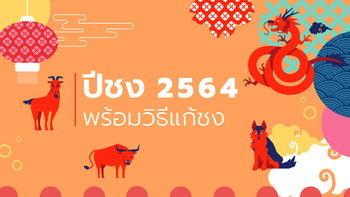 ปีชง 2564 ปีนักษัตรปีฉลู มีปีไหนชงบ้าง พร้อมวิธีแก้ปีชง