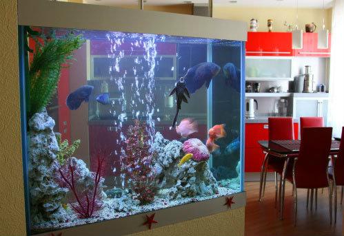 การเลี้ยงปลา หรือมีอ่างปลาไว้ในบ้าน