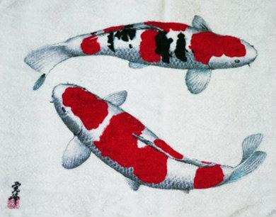 ภาพปลาคู่