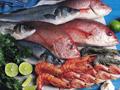 อาหารทะเลทายใจ