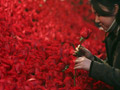 อินเลิฟ : รวมเด็ด วันวาเลนไทน์ 2010