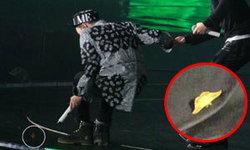 วงแตกแหกกระเจิง! แดซอง BIGBANG หมดท่า กลัวผีเสื้อ!