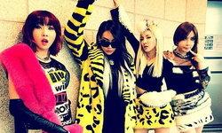 20 ภาพถ่ายอินสตาแกรมสุดคูลของสี่สาว 2NE1