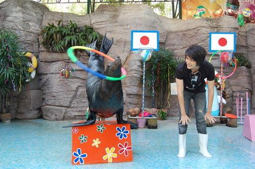 เตชินท์ ทำเก๋...วางไมค์เข้าคอร์สเป็น ครูฝึกสอนแมวน้ำ