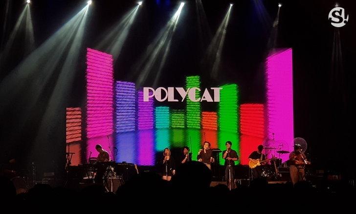 polycat-sanook
