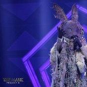 หน้ากากกระต่ายป่า