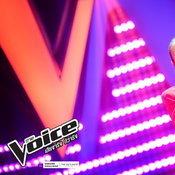 แอน The Voice