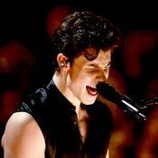 Grammy Awards 2019: Shawn Mendes