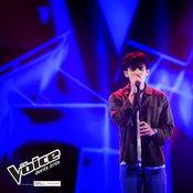 เจมส์ The Voice